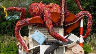 pieuvre detritus ocean